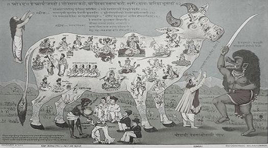 Hindu Holy Cow