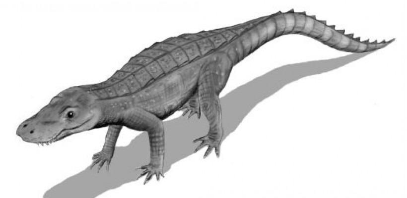 Crocoduck