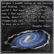 Imagine a Puddle - Douglas Adams