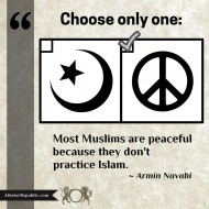 Most Muslims are Peaceful