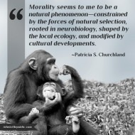 Morality a Natural Phenomenon
