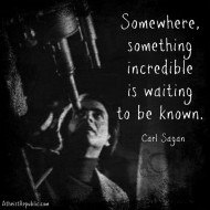Something Incredible - Carl Sagan