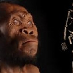 Paleoanthropology / Evolutionary Anthropology - student's picture