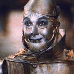 Tin-Man's picture