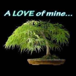 arakish's picture