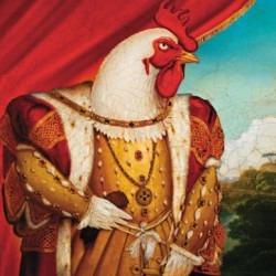 Chicken's picture